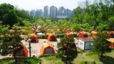 강동 그린웨이가족 캠핑장 작은 사진