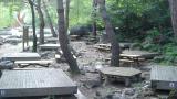 가리왕산 자연휴양림 야영장 작은 사진