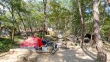 입화산 참살이숲 야영장 작은 사진