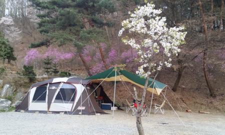 별꽃해농원 캠핑장 작은이미지