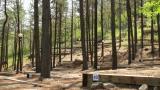 제암산 자연휴양림 야영장 작은 사진