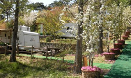 함평자연생태공원 캠핑장 작은이미지