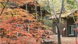청송자연휴양림 야영장 작은 사진