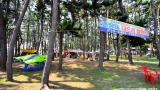 춘장대 나드리 캠핑장 작은 사진