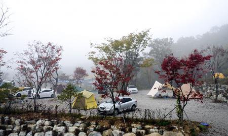 단풍숲 캠핑장 작은이미지