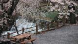 달천공원 오토캠핑장 작은 사진