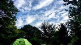 청량산 나무네 숲 캠핑 작은 사진