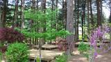 푸른숲 캠핑장 작은 사진