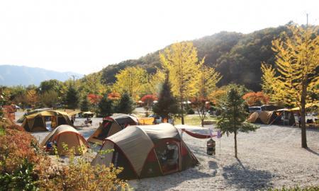 용화산 프라임 캠핑장 작은이미지