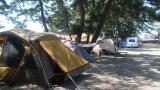 나라펜션 캠핑장 작은 사진