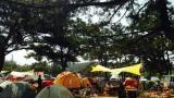 몽산포 오션 캠핑장 작은 사진