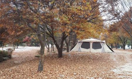 큰마당 캠핑장 작은이미지