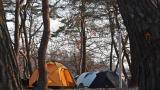 후평숲 캠핑장 작은 사진