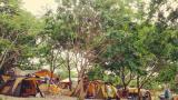 덕바위 캠핑장 작은 사진