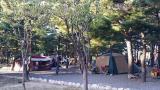 솔밭 가족 캠프촌 작은 사진