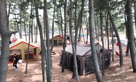 마검포 텐트 캠핑장 작은이미지