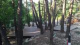 소나무숲아래 캠핑장 작은 사진